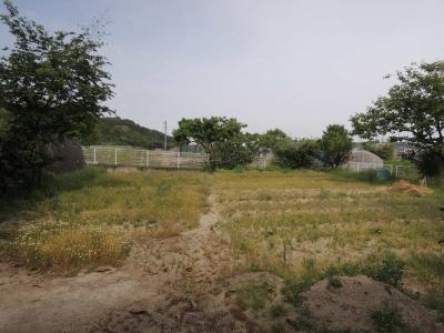 倉敷市某所、南斜面の山際の敷地