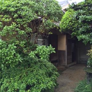 築70年の古民家 お庭