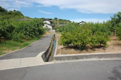 岡山県倉敷市玉島 平屋新築工事の造成を始めました