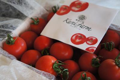 株式会社木ままのお客様、クニファーム様からトマトをいただきました