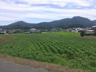 岡山県総社市に建築中のE様邸周りの景色 その1